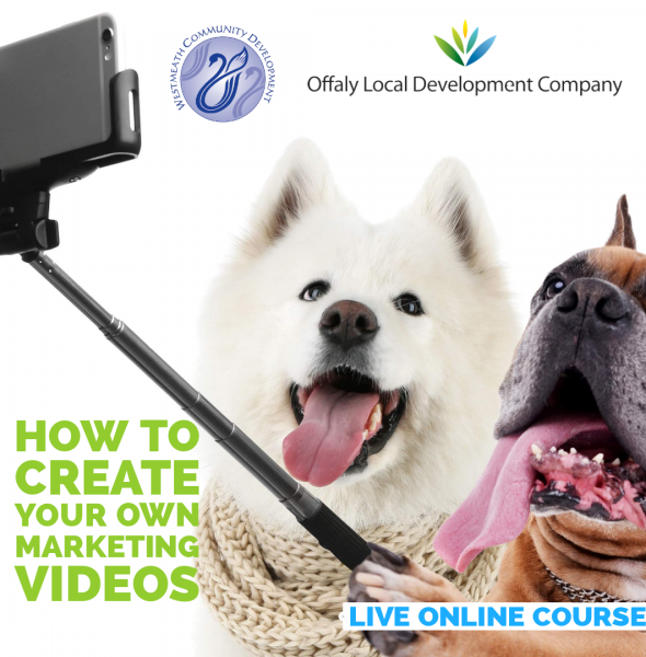 How to create marketing videos on a budget to promote your business